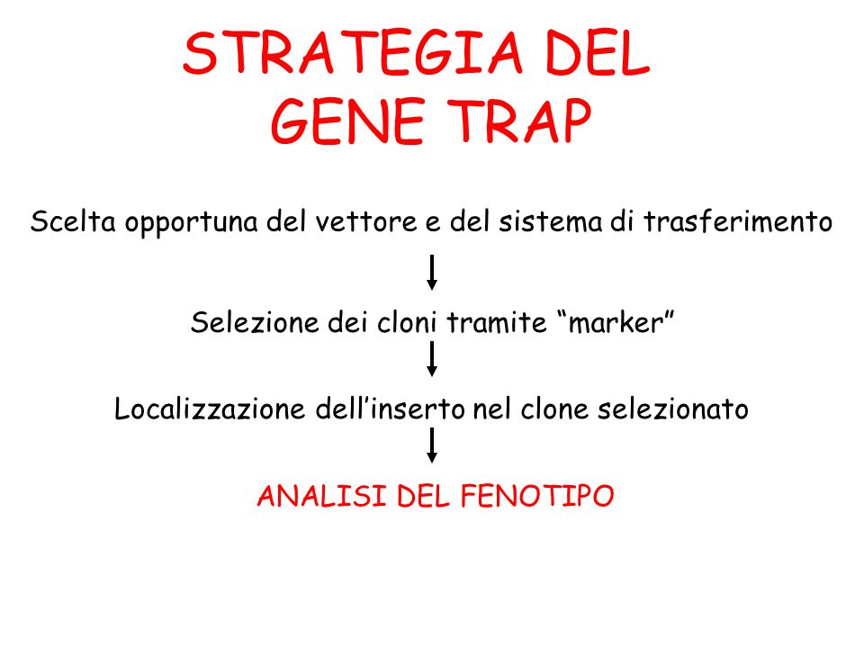 STRATEGIA DEL GENE TRAP