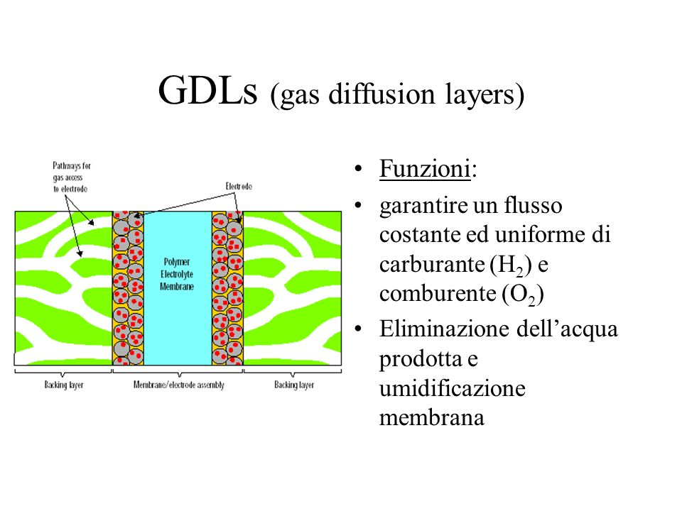 GDLs (gas diffusion layers)