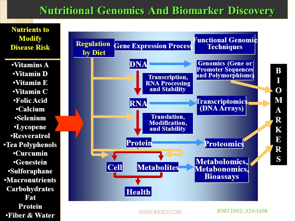 Nutritional Genomics And Biomarker Discovery