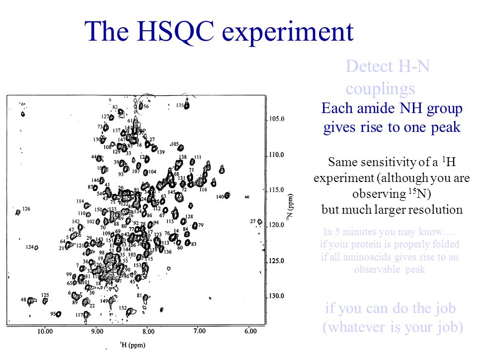 The HSQC experiment Detect H-N couplings