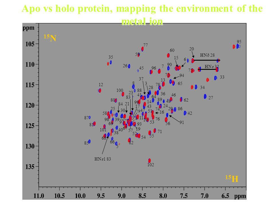 Apo vs holo protein, mapping the environment of the metal ion
