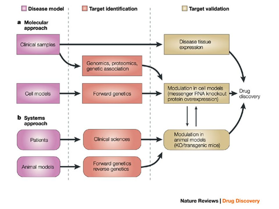 Figure 1 | Overview of molecular- and system-based approaches to target discovery.