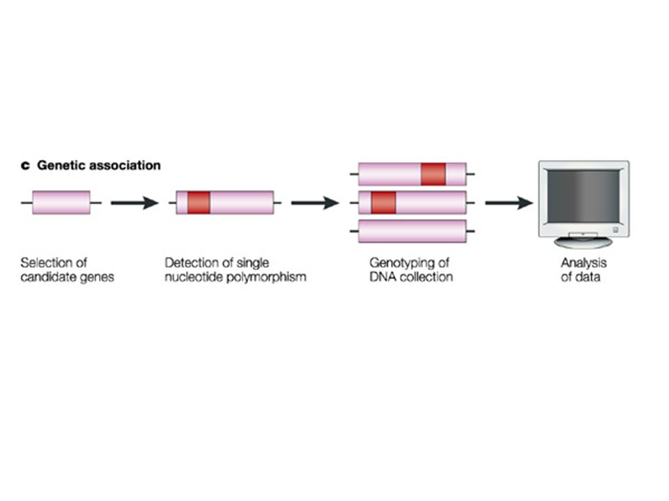 Figure 2 | Correlative technologies used in target identification