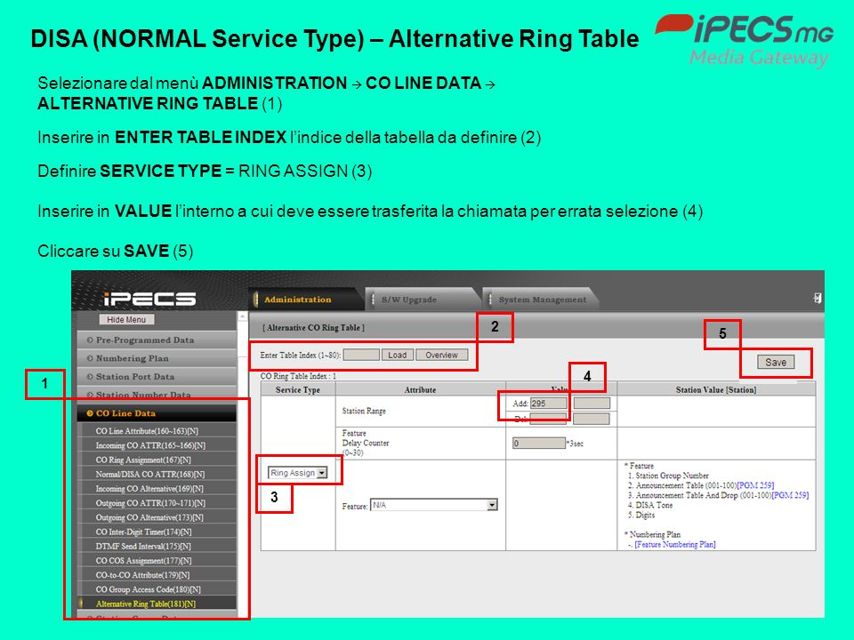 DISA (NORMAL Service Type) – Alternative Ring Table