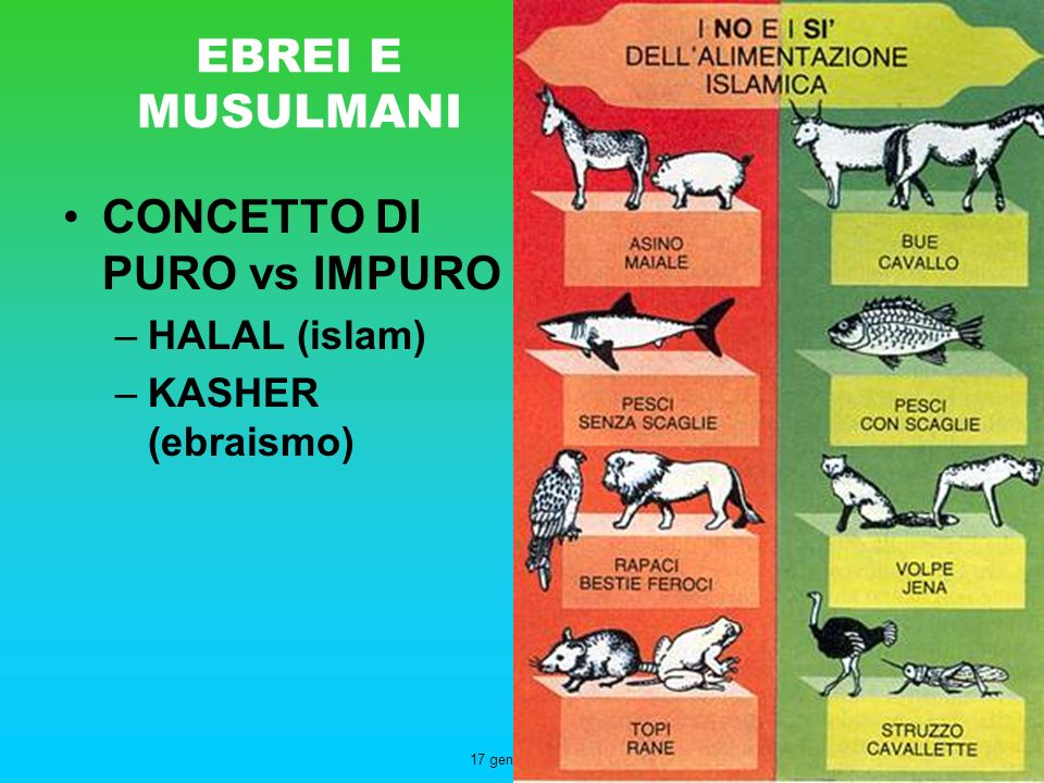 CONCETTO DI PURO vs IMPURO
