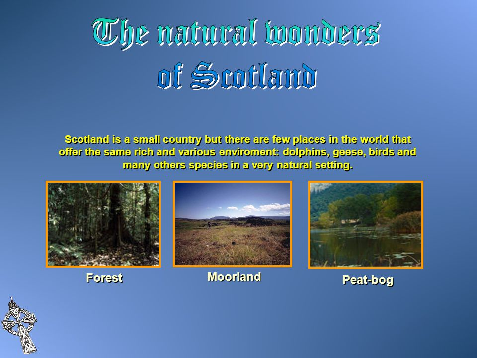 The natural wonders of Scotland Forest Moorland Peat-bog