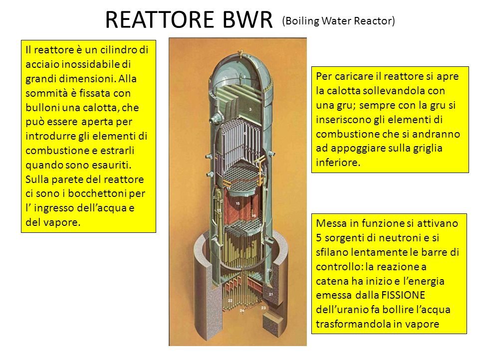 REATTORE BWR (Boiling Water Reactor)