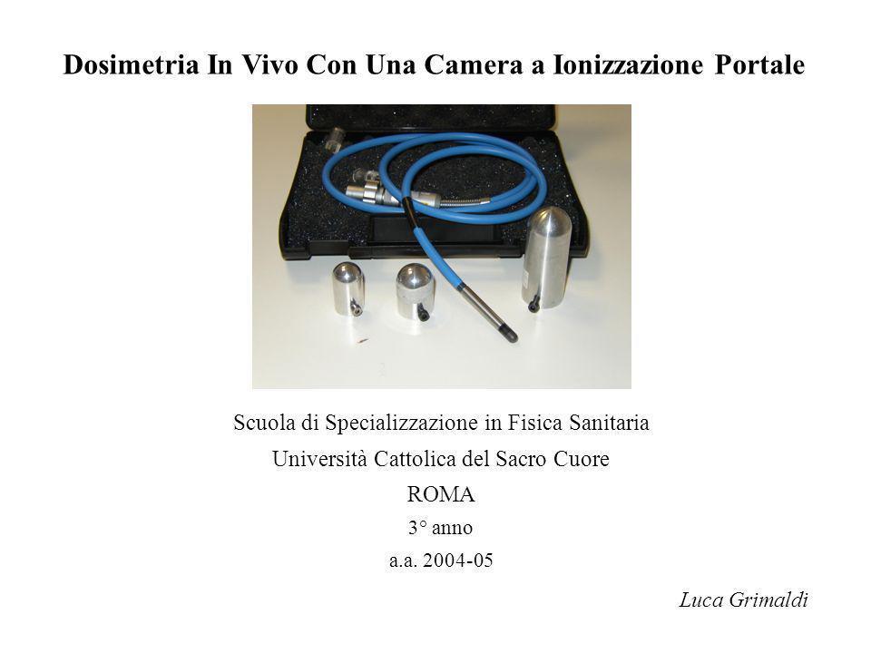Dosimetria in vivo con una camera a ionizzazione portale for Portale camera