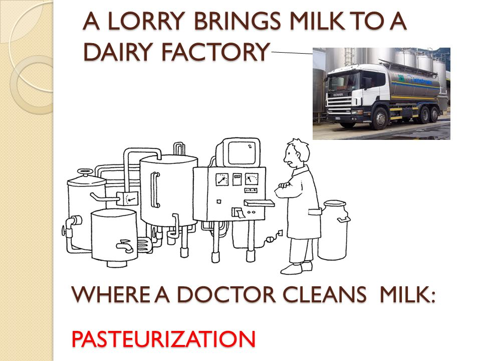A LORRY BRINGS MILK TO A DAIRY FACTORY