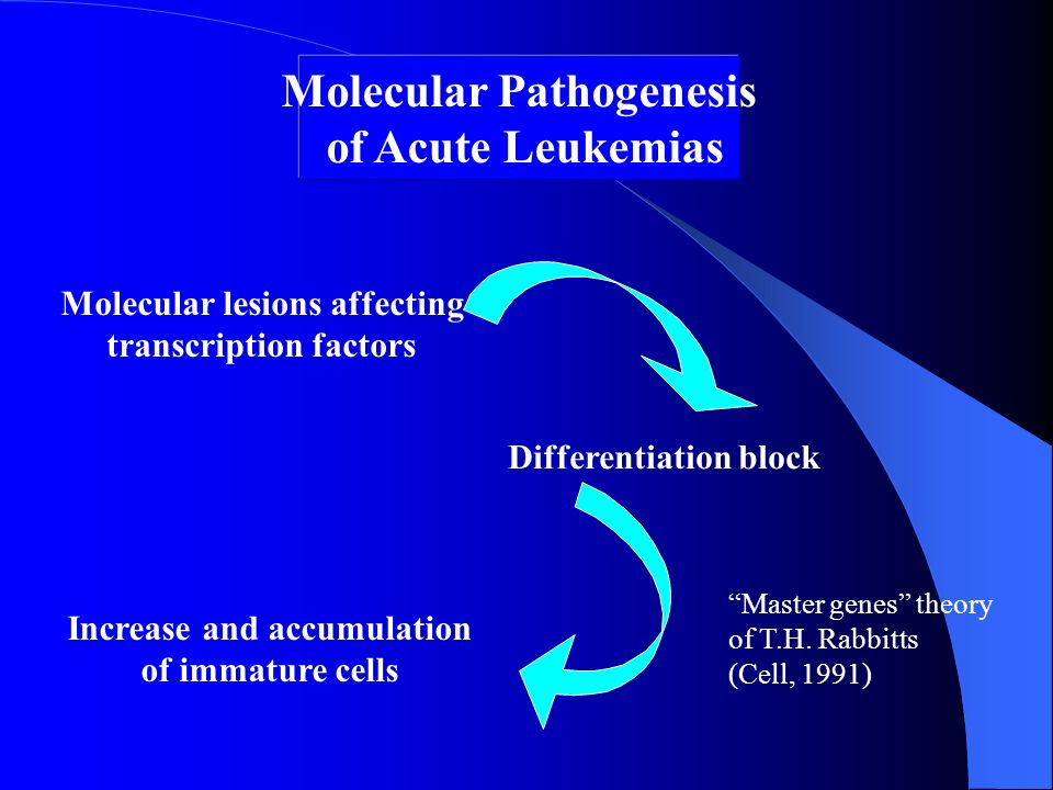 Molecular Pathogenesis of Acute Leukemias