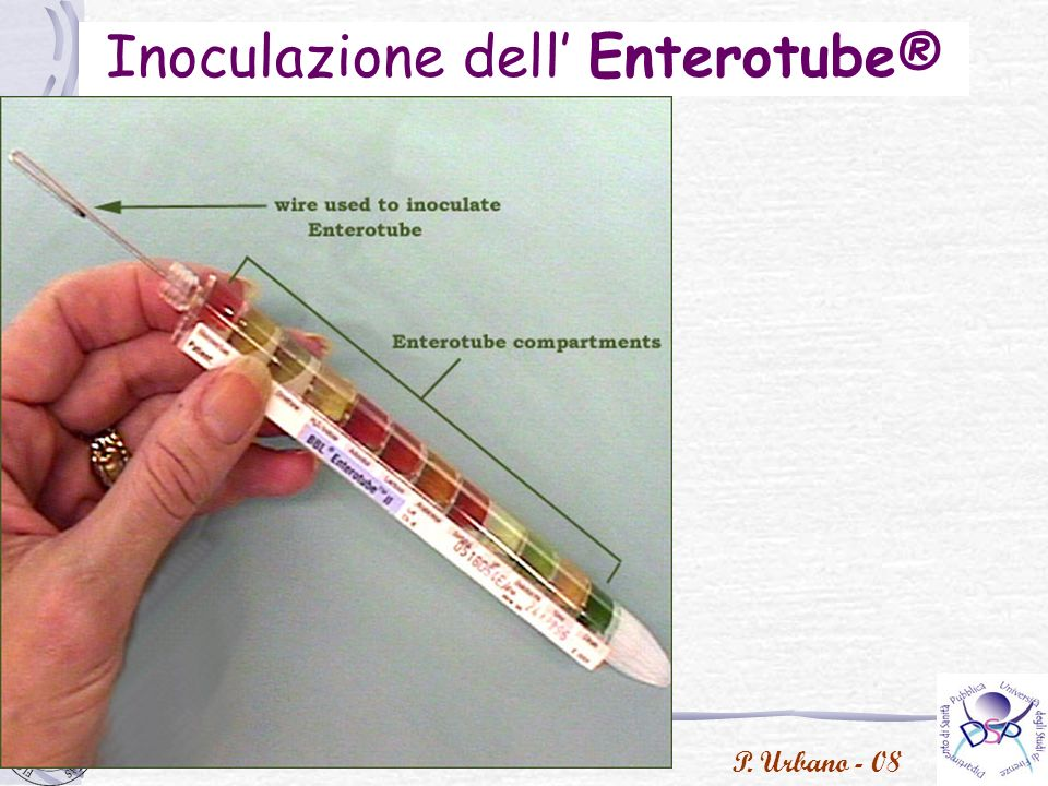 Inoculazione dell' Enterotube®