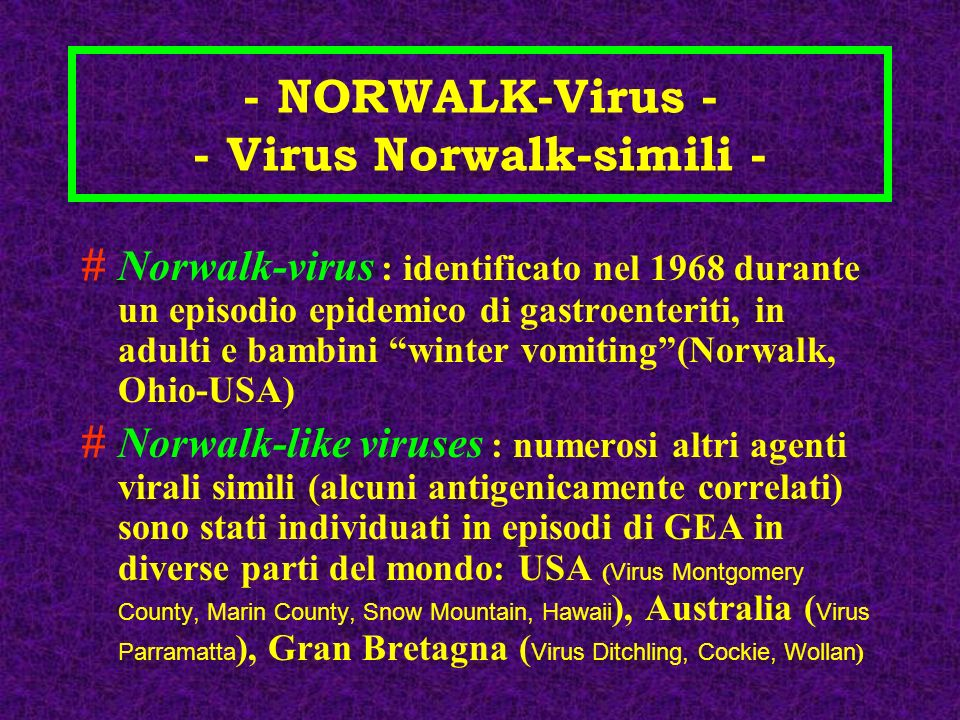 - NORWALK-Virus - - Virus Norwalk-simili -