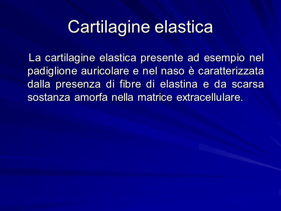 Cartilagine elastica