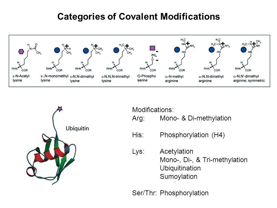 Categories of Covalent Modifications