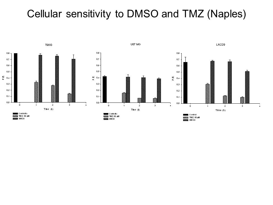 Cellular sensitivity to DMSO and TMZ (Naples)
