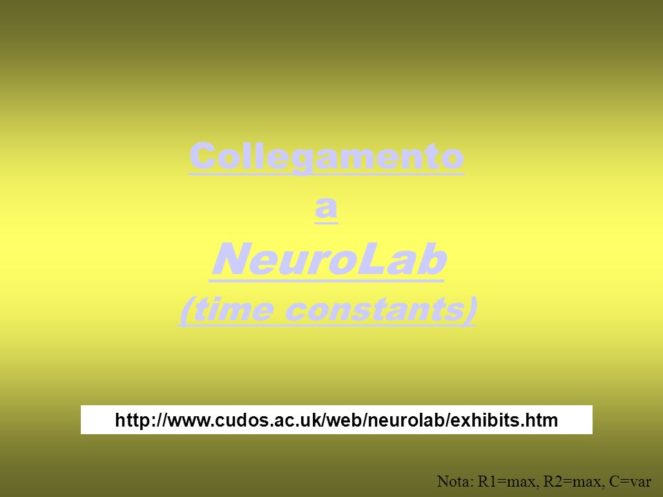 NeuroLab Collegamento a (time constants)