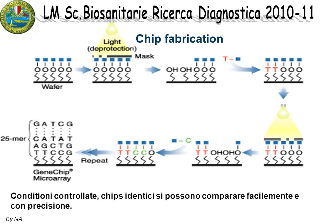 Chip fabrication Conditioni controllate, chips identici si possono comparare facilemente e con precisione.