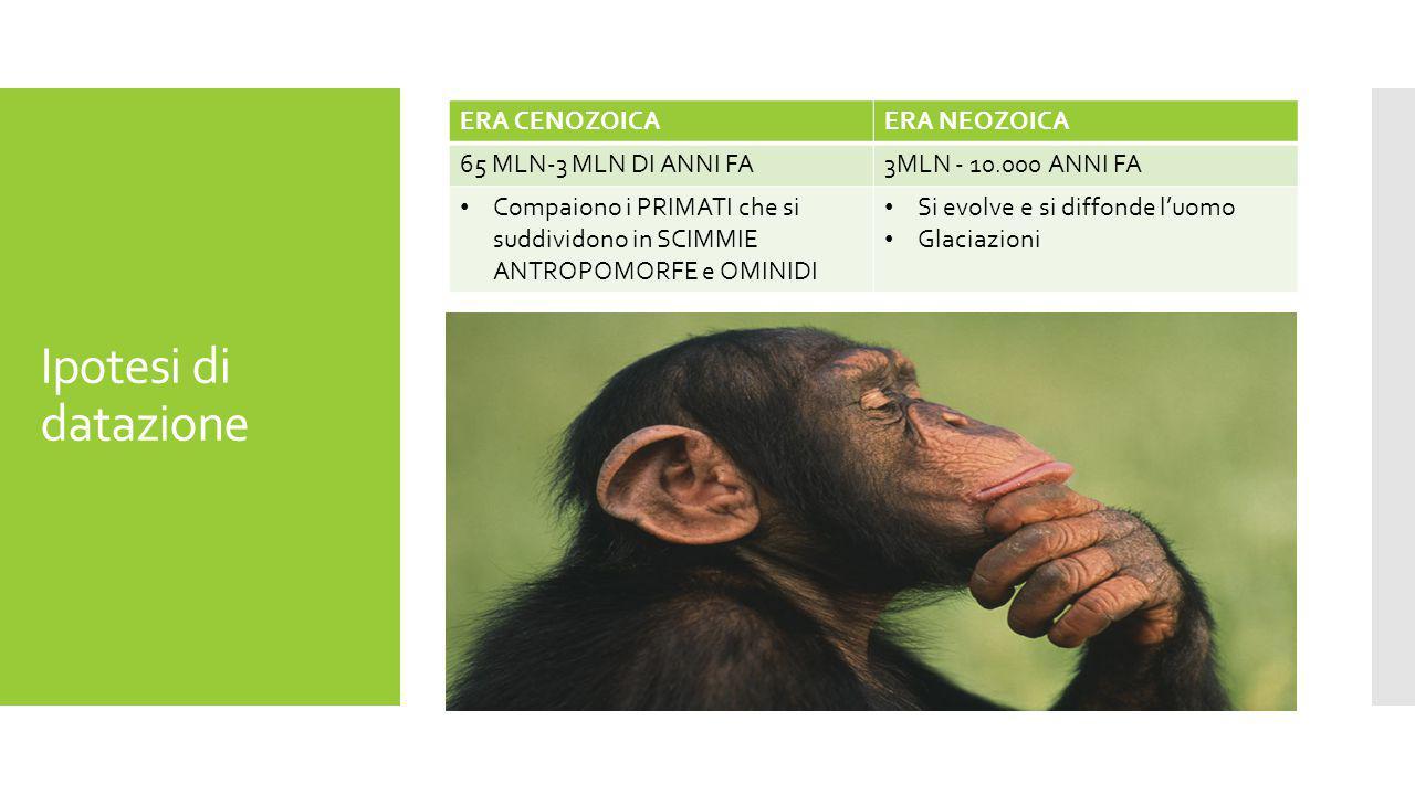 scimmia datazione Top 20 migliori siti di incontri in USA