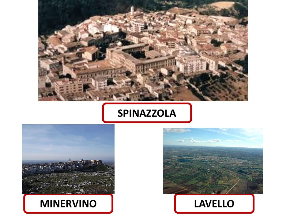 SPINAZZOLA MINERVINO LAVELLO