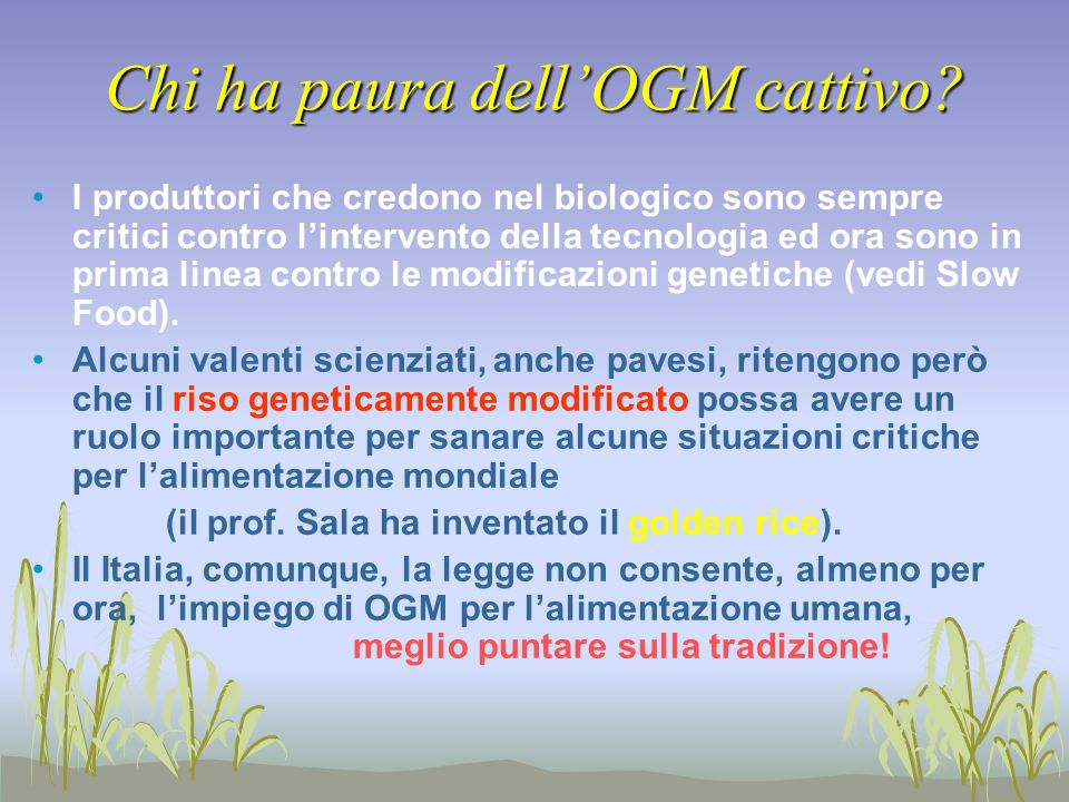 Chi ha paura dell'OGM cattivo