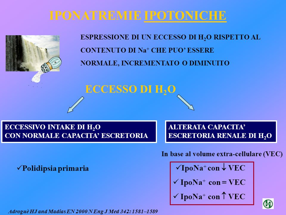 In base al volume extra-cellulare (VEC)