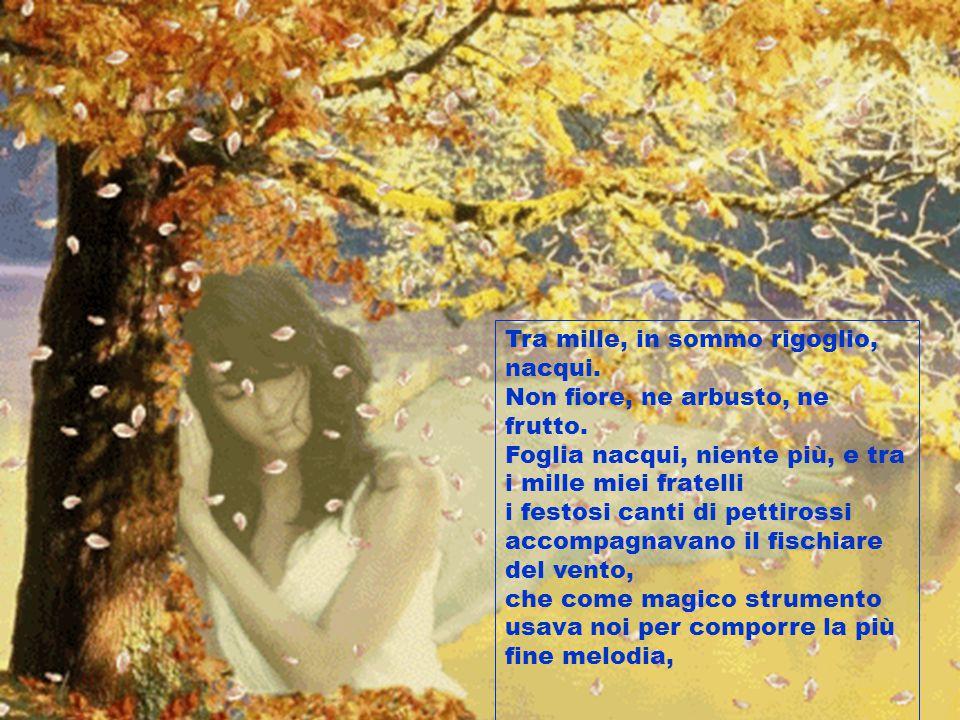 Immagini E Poesie Sullautunno Presentate Da Ppt Video Online