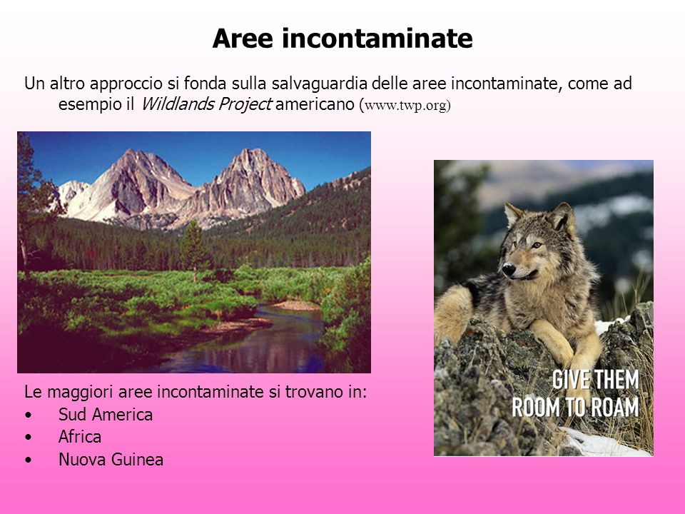 Aree incontaminate