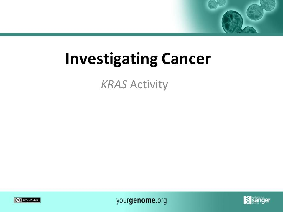 Investigating Cancer KRAS Activity 1
