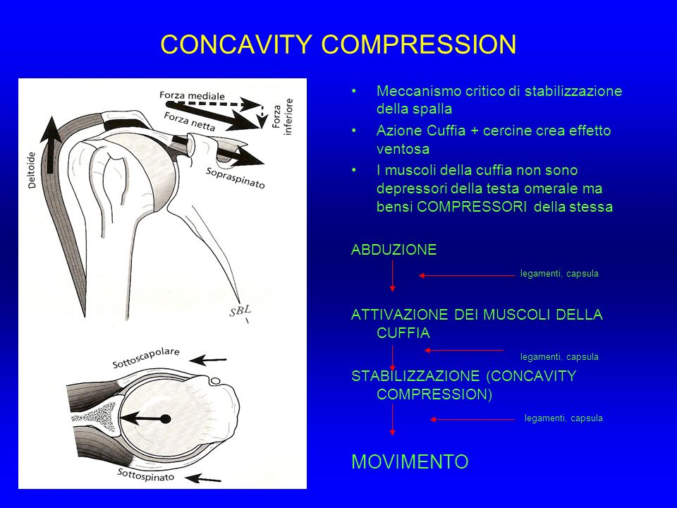 CONCAVITY COMPRESSION