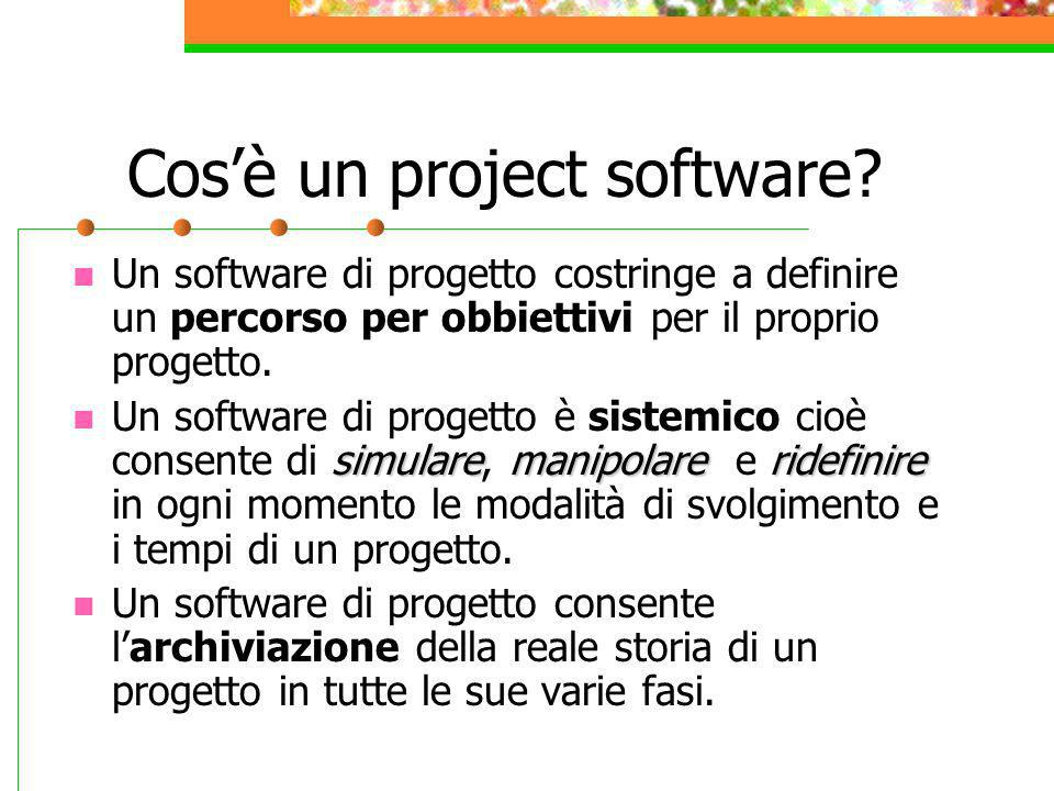 Cos'è un project software