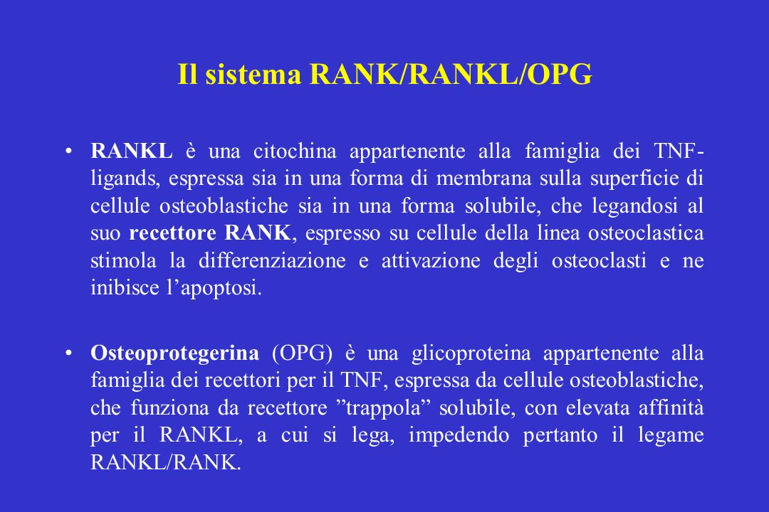 Il sistema RANK/RANKL/OPG