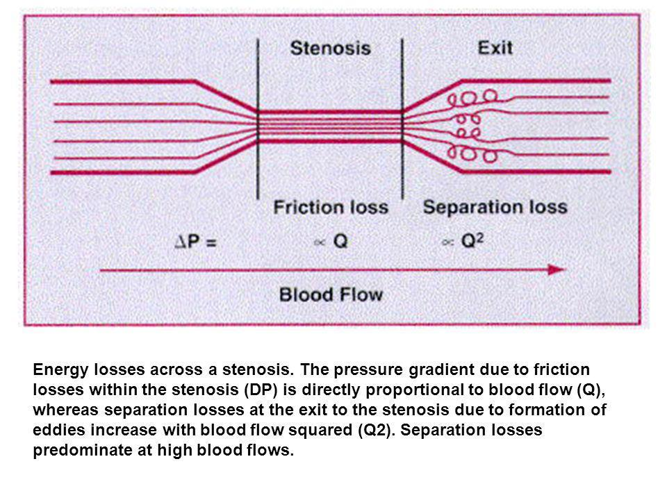 Energy losses across a stenosis