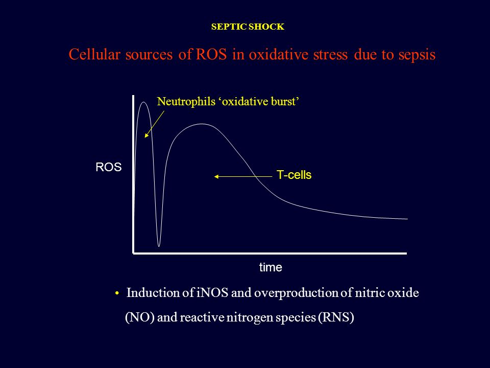 Cellular sources of ROS in oxidative stress due to sepsis