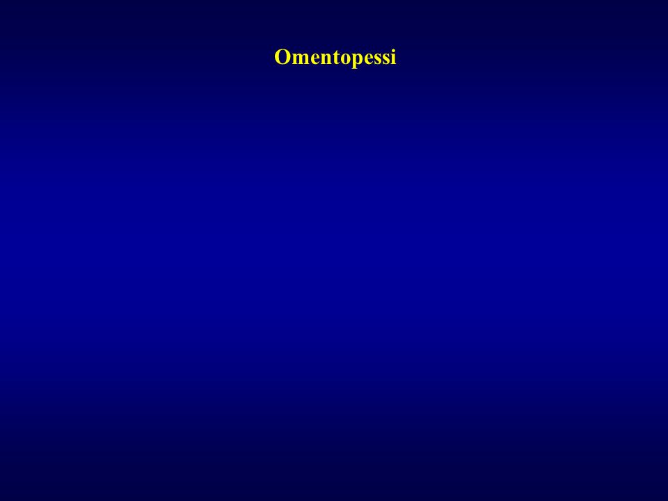 Omentopessi
