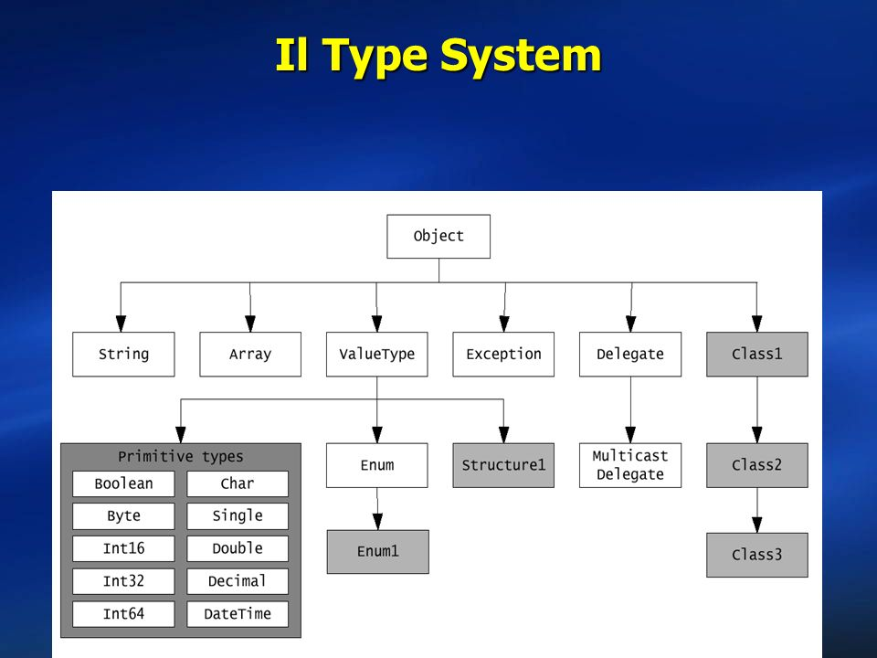 Il Type System