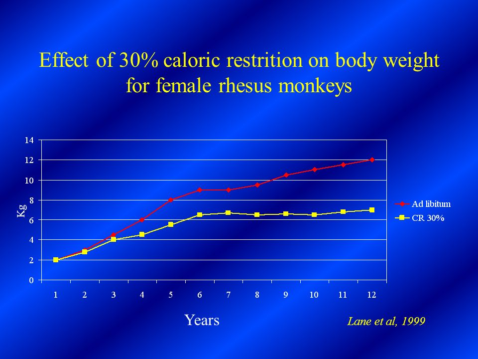 Effect of 30% caloric restrition on body weight for female rhesus monkeys