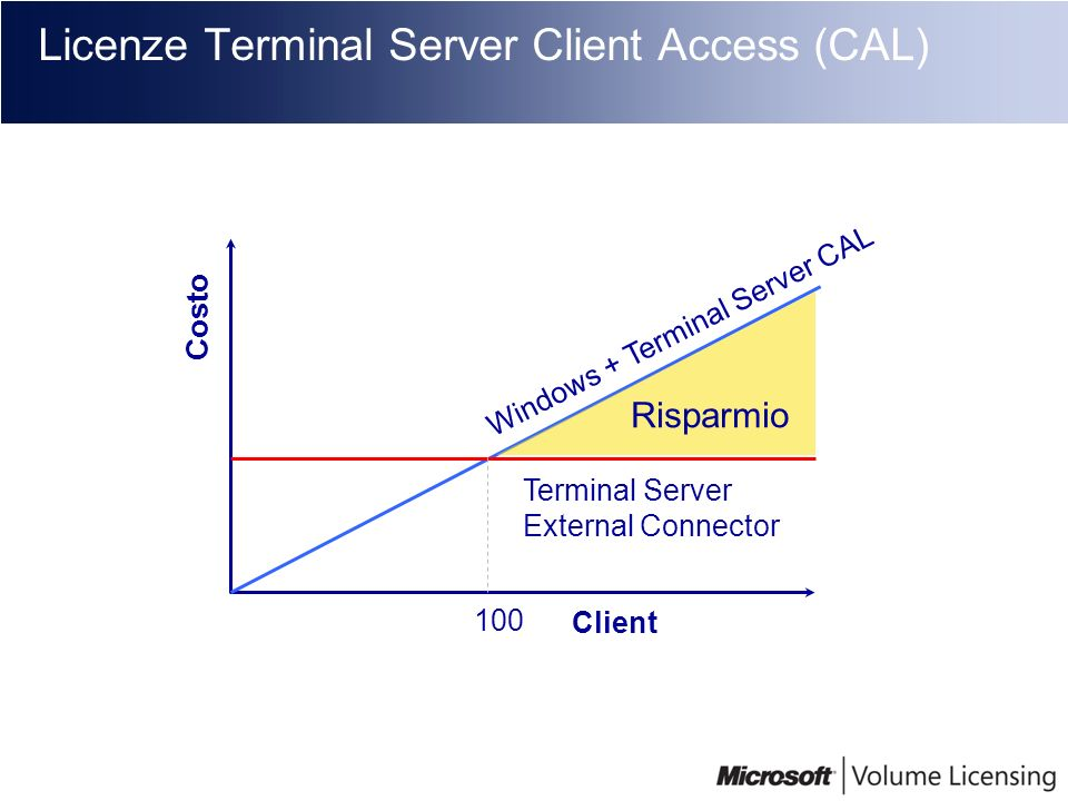 Licenze Terminal Server Client Access (CAL)