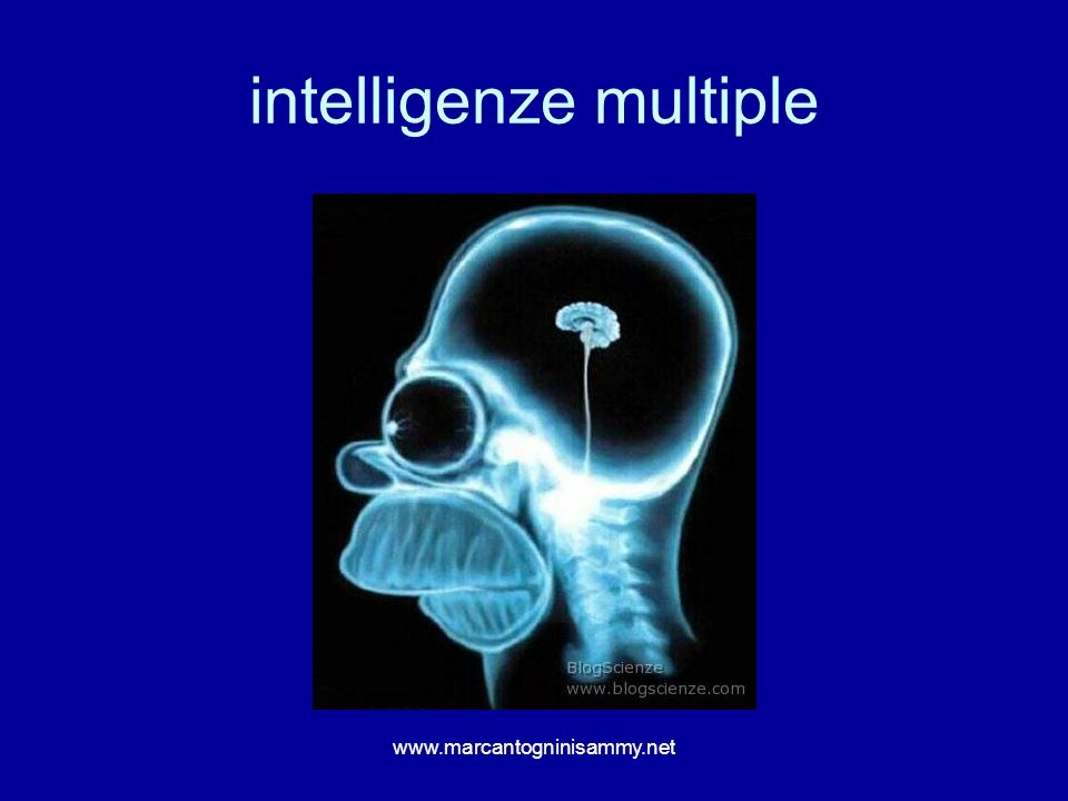 intelligenze multiple