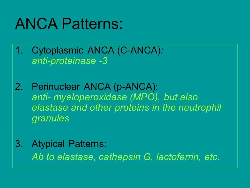 ANCA Patterns: Cytoplasmic ANCA (C-ANCA): anti-proteinase -3