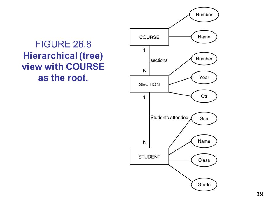FIGURE 26.8 Hierarchical (tree) view with COURSE as the root.