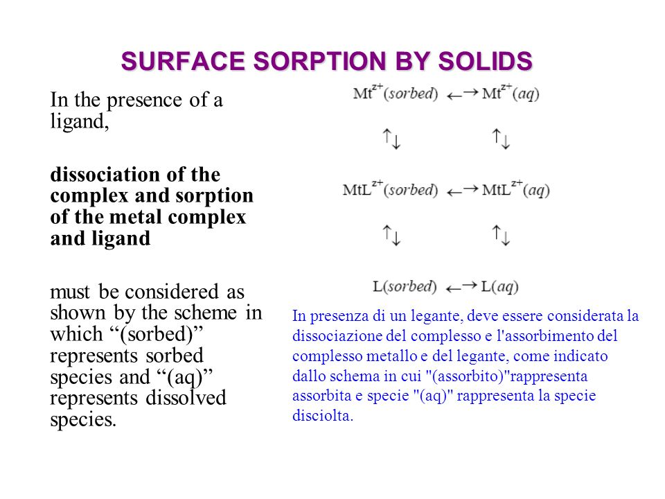 SURFACE SORPTION BY SOLIDS