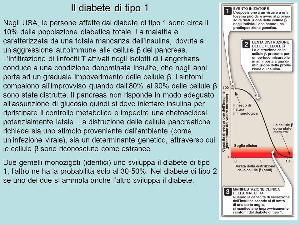 Dieta diabete tipo 1 e 2