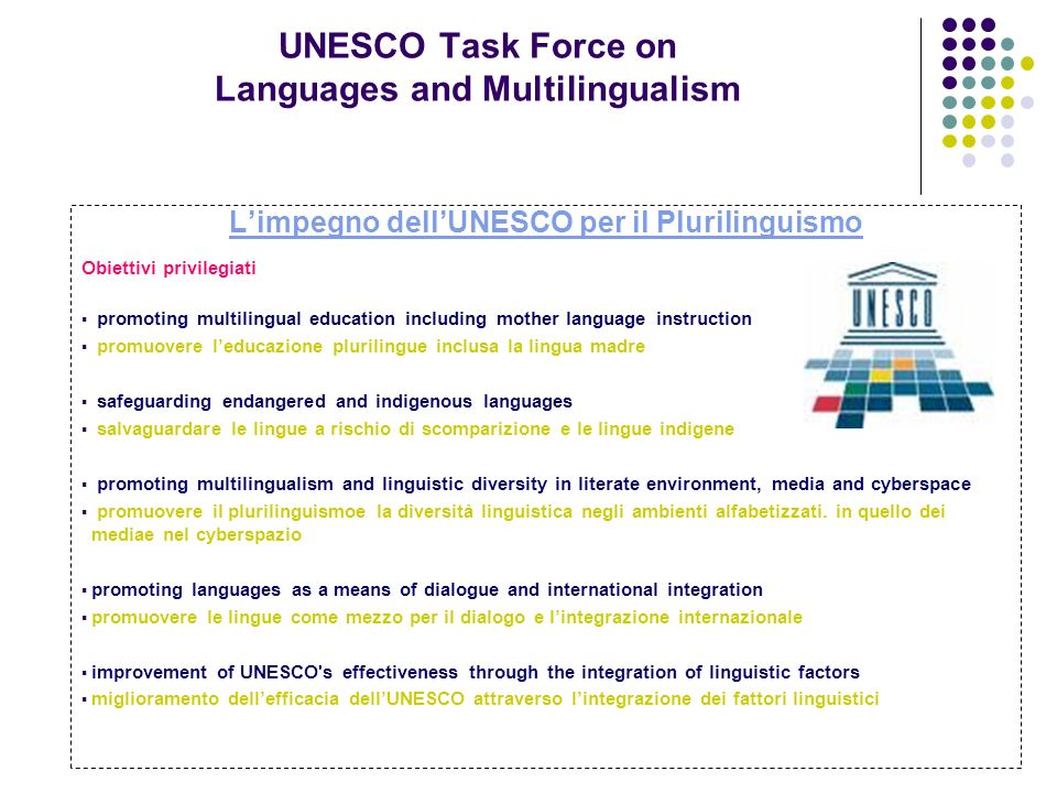UNESCO Task Force on Languages and Multilingualism