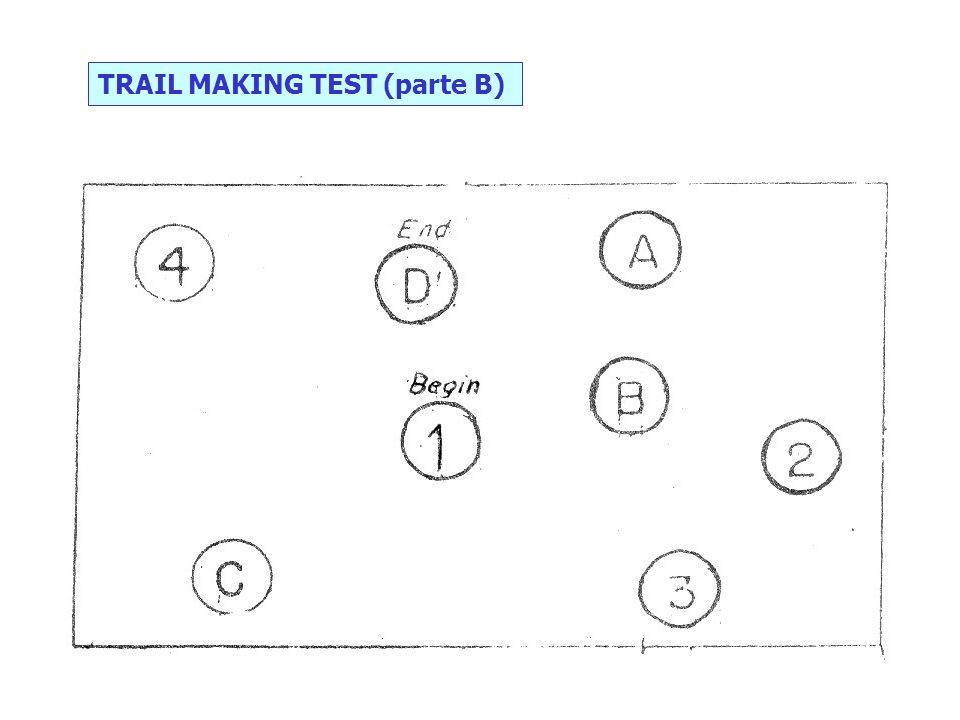 TRAIL MAKING TEST (parte B)