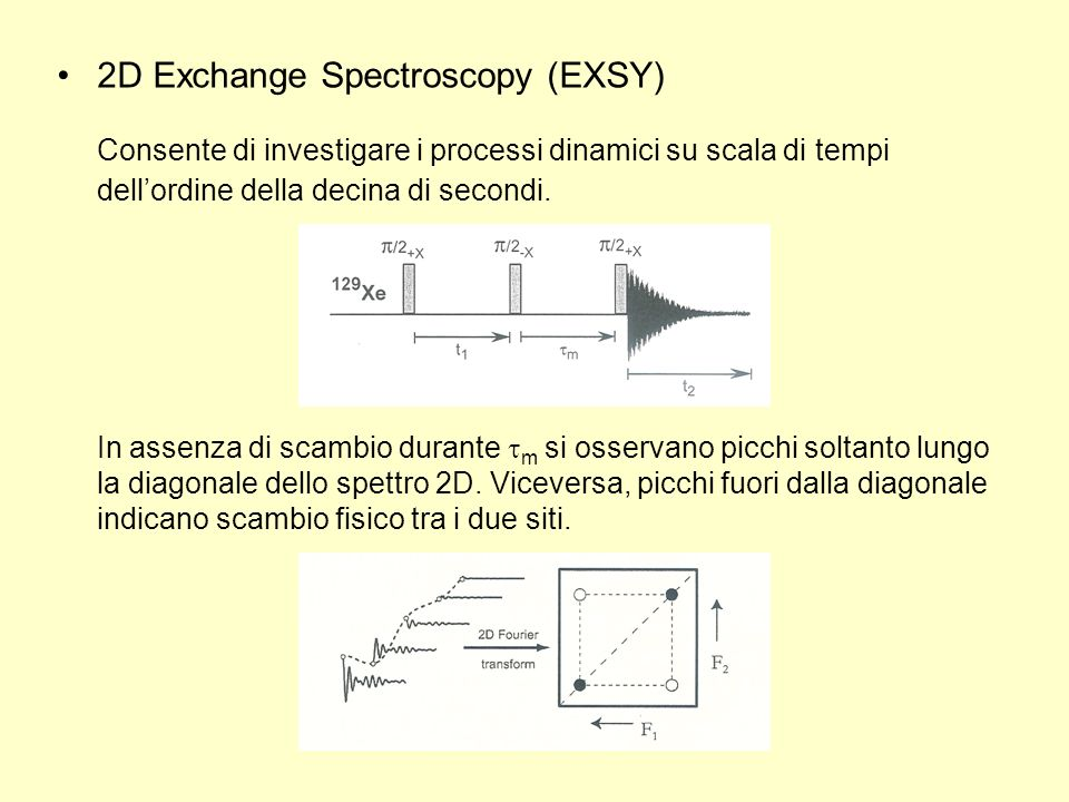 2D Exchange Spectroscopy (EXSY)