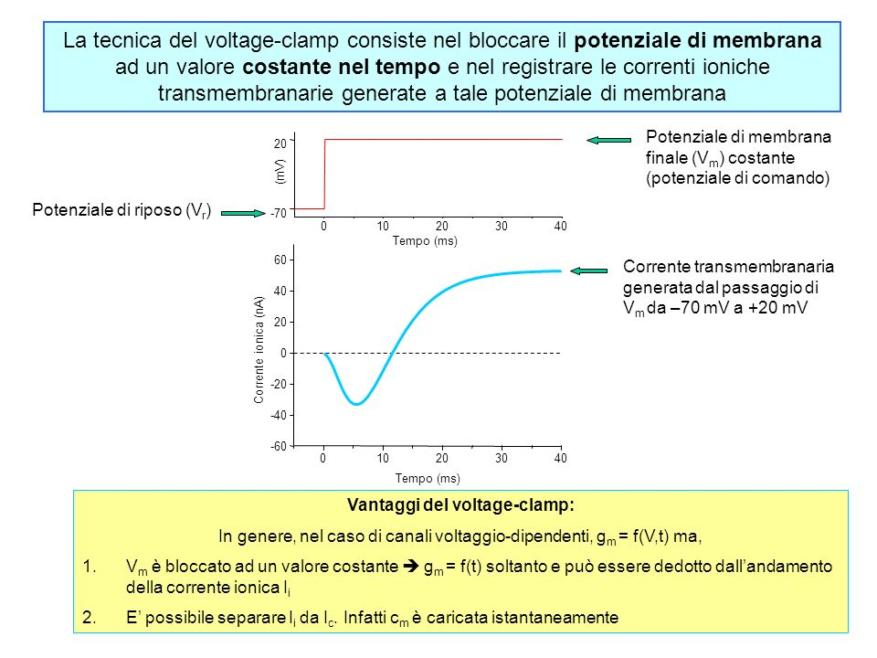 Vantaggi del voltage-clamp: