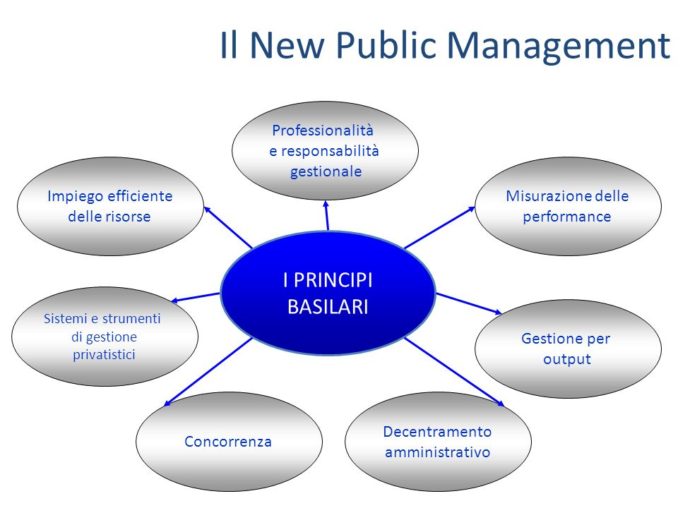 Il New Public Management
