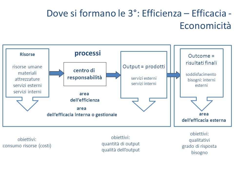 dell'efficacia interna o gestionale dell'efficacia esterna