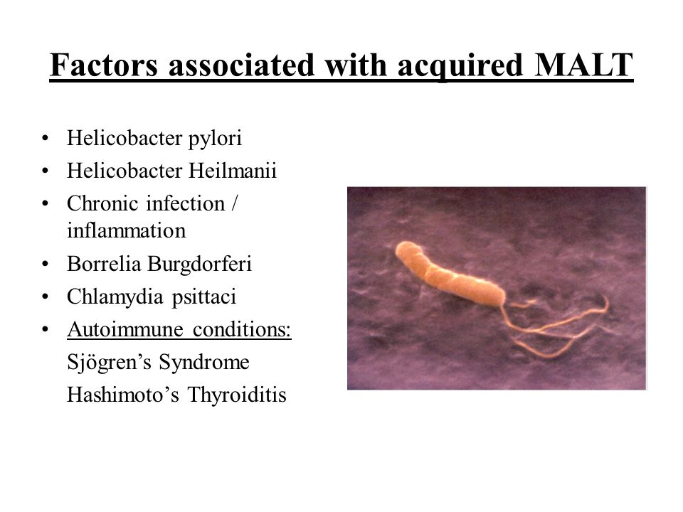 Factors associated with acquired MALT