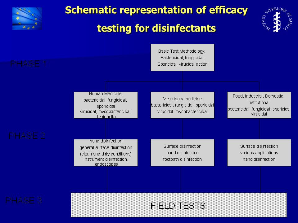 Schematic representation of efficacy testing for disinfectants
